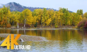 4K Nature Relax Video - Autumn Forest on the Riverside - 1 HR