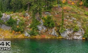 Autumn Foliage in Washington State. Episode 2 - Nature Relaxation Video - 10 hours