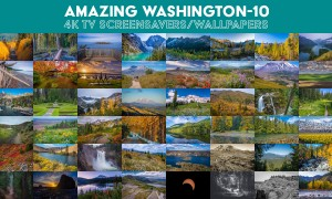 Amazing Washington 10