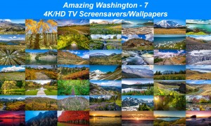 Amazing Washington 7