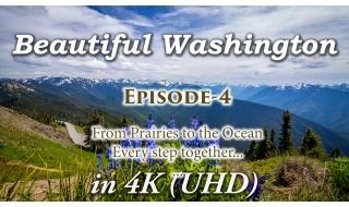Beautiful Washington Episode 4 - 4K, HD