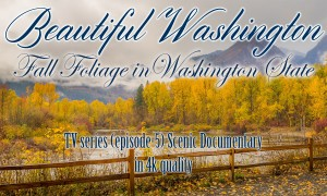 Beautiful Washington Episode 5 - 4K, HD