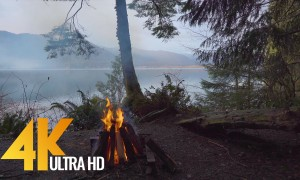 4K Nature Views and Campfire Crackling Sounds - 8 HRS