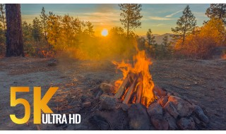 Campfire at Sunrise - 5K/5K HDR Nature Relaxation Video