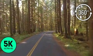 5K 360 VR Video - Olympic National Park. Scenic Roads. Part 1
