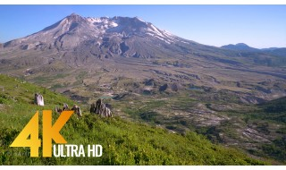 4K Nature Relax - Sweeping View of Mt. St. Helens & Bird Signing - 1 HR