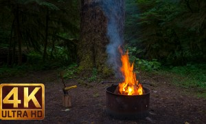 Campfire Relaxation Video in 4k - 3 HRS for relaxation and sleep, Episode 3