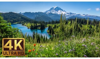 Instrumental Piano Music & 4K Nature Photo Collection of Washington State - Part 10