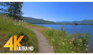 4K Virtual Hike/Forest/River Views with Music - Nature Walk - 4.5 HRS