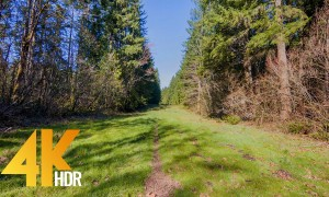 4K HDR/4K- Walking in the Woods, Traditional Lake Loop, Snoqualmie region WA - 2 HRS