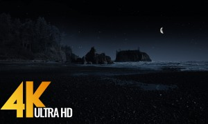 Ruby Beach at night - 4K Landscape Views and Nature Sounds