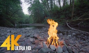River Campfire - 5 Hour Peaceful Fire Sounds & Birds Chirping in 4K - 2160p - Episode 3
