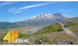 4K Nature Relax Video - Harry's Ridge Trail Mount St. Helens, Washington, USA