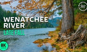 Virtual Relaxation 8K 360° VR Video - Wenatchee River - Relaxing Birds Songs and River Sounds