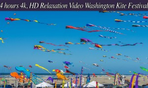 Washington State Kite Festival - 4K/HD Relaxation video - 4 hours