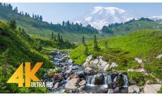 Mt. Rainier Pacifying Stream - 4K Relaxing Stream