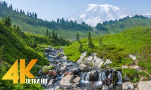 Mt. Rainier Pacifying Stream - 4K Relaxing Stream