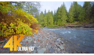 4K Nature relax Video from Nooksack River, Mount Baker Area, Washington