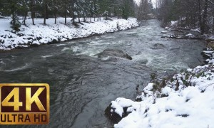 4K Winter Relax Video - Snowy River with Water Sounds - 1 HR