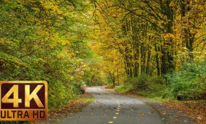 4K Nature Relaxation Video - Urban Autumn with piano music - 2 HOURS