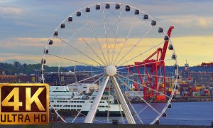4K Urban Life Relax Video - Views from Victor Steinbrueck Park - 1.5 HRS