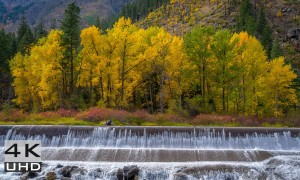 Wenatchee River. Autumn - 4K Nature Relaxation Video -7 hours