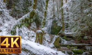 Winter 4K Nature Relaxation Footage - Water and Forest. Winter. Part 5 - 2 HRS